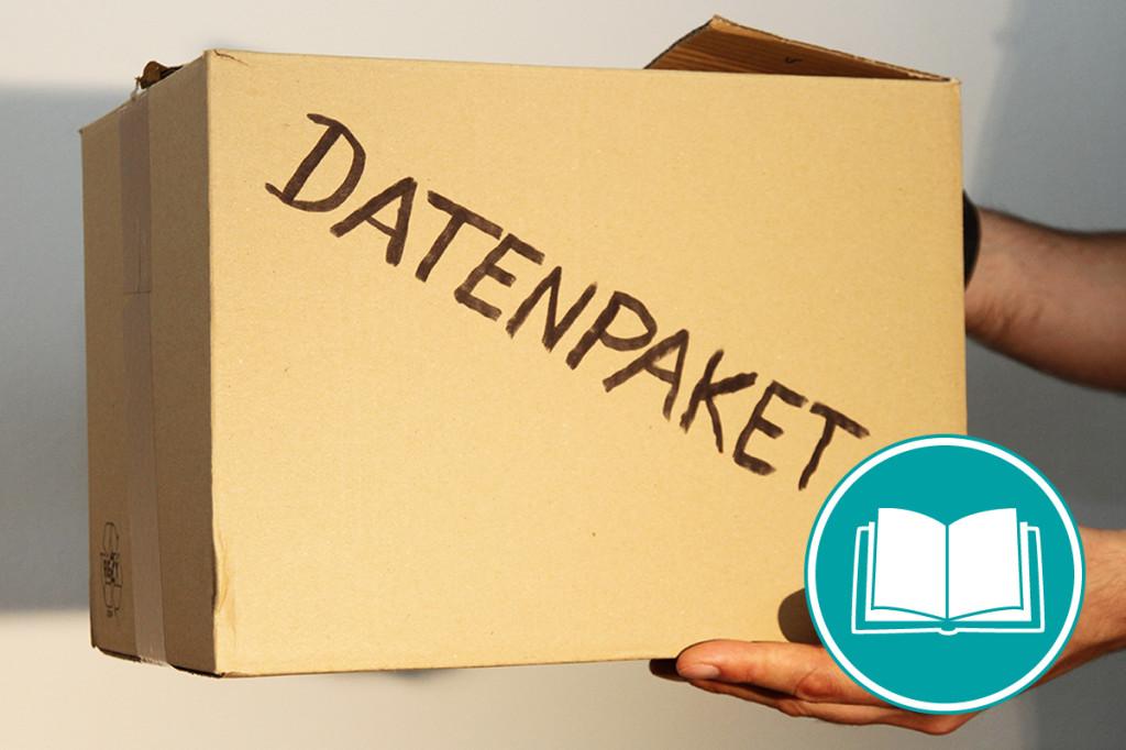 """Jemand hält einen Karton, auf dem """"Datenpaket"""" steht"""